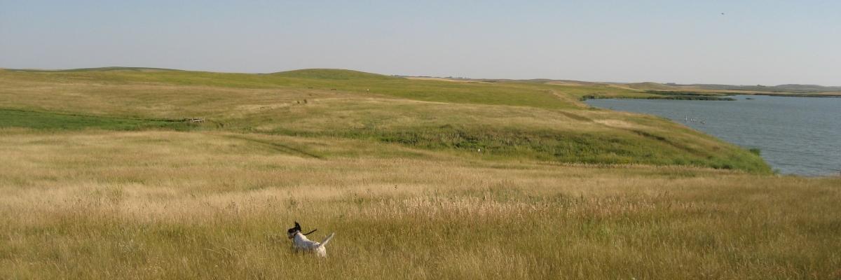 Sassy-Prairie_slider